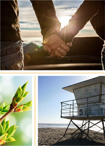 Two people holding hands. A lifeguard tower. A close up of a green plant.